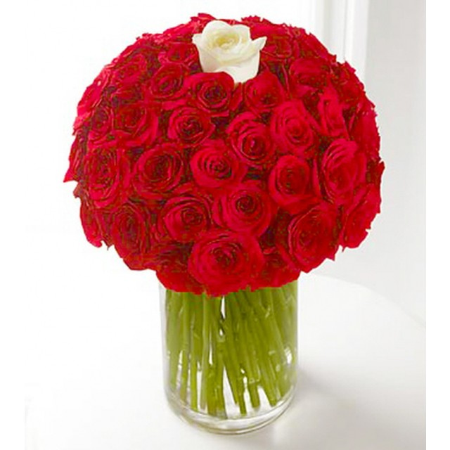 Only You Red and White Roses