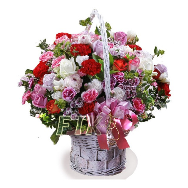 Mother's Love like a Heaven Carnation