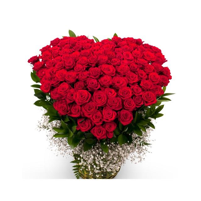 100 Roses Heart