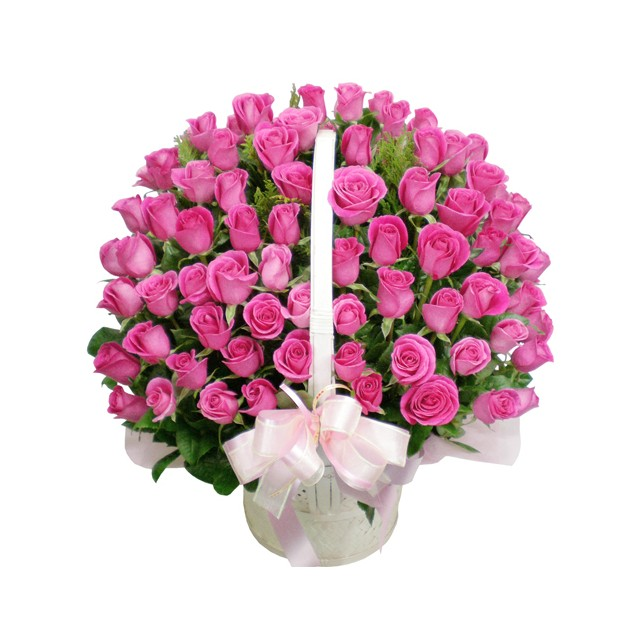 100 Pink Roses