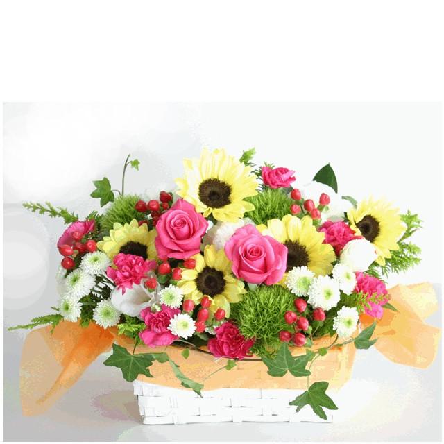 Happy Smile Sunflowers
