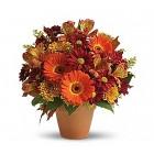 Autumn Seasonal  Bouquet