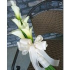 Calla Lily to You