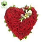 100 Rose Cupid's Arrow